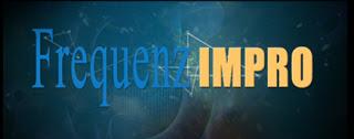 Logo von FrequenzImpro